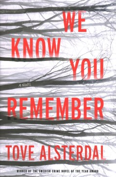 We Know You Remember (The High Coast Series)