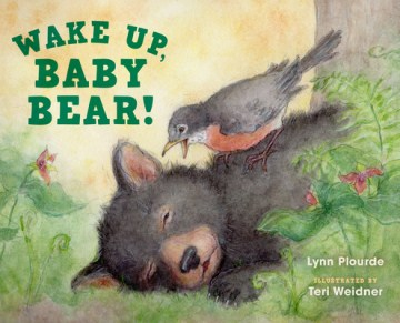 Wake Up, Baby Bear!