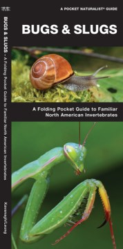 Bugs & Slugs: A Folding Pocket Guide to Familiar North American Invertebrates (Pocket Naturalist Guide) (Pamphlet)